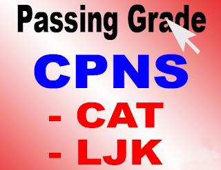 Passing Grade Tes Kompetensi Dasar TKD CPNS 2013