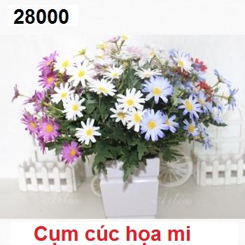 Phu kien hoa pha le tai Dong Hoi