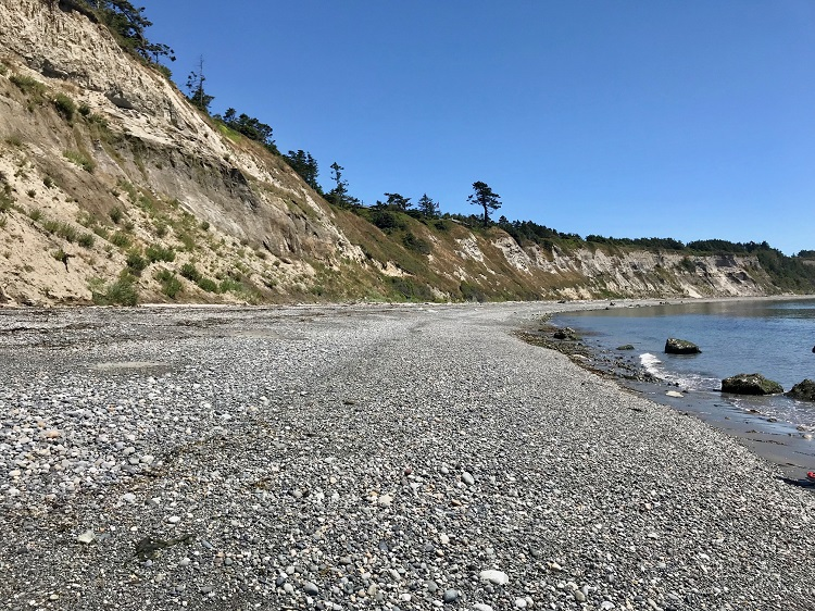 Ebey's Landing, Washington Agates, Best places to find agates in Washington, Ebey's Landing Agates, raw agates
