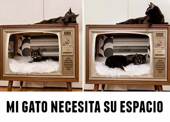 gatos, mascotas, casas, sillones, manualidades, labores, diys