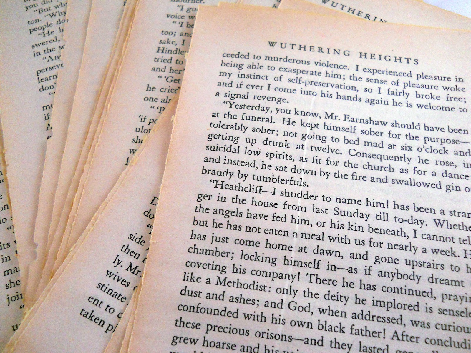 sympathetic background in wuthering heights essay Free essay: the imporatnce of weather in wuthering heights in wuthering  the  use of sympathetic background can be seen as early as the first chapter,.