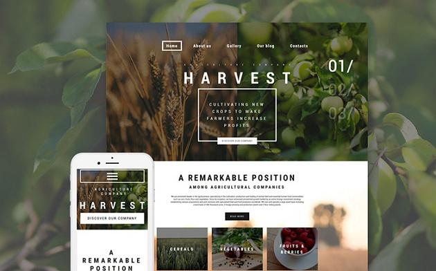 best sellers organice website theme
