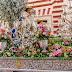 Divina Pastora de las Almas de San Antonio de Padua 2.018