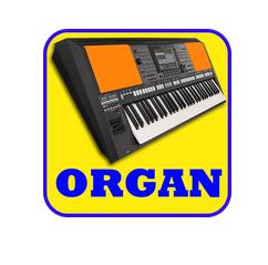 Electronic Organ APK