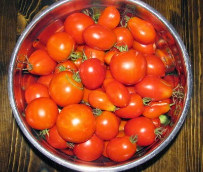 Bowl full of Amish Paste, Roma, and hybrid table tomatoes