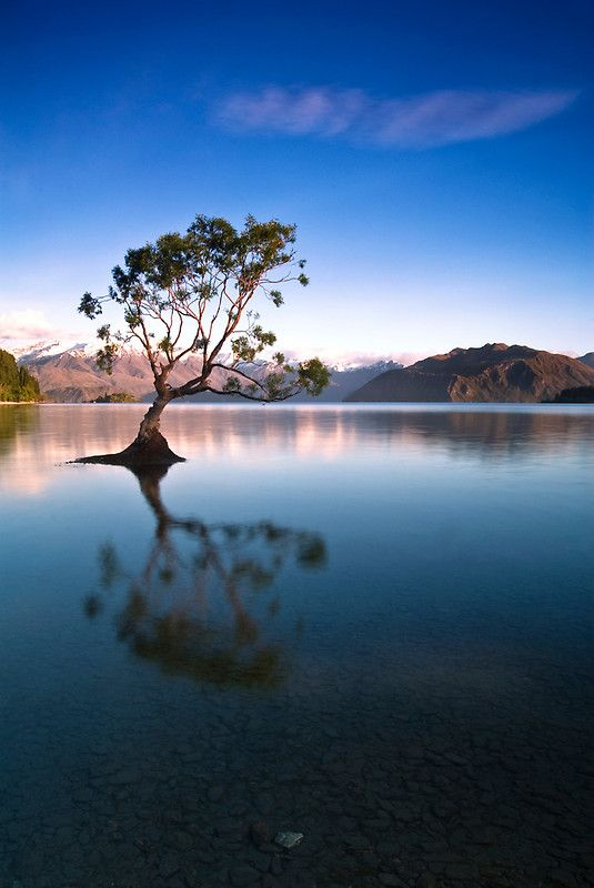 Lock-Up - Lake Wanaka, New Zealand
