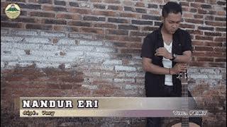 Lirik Lagu Nandur Eri (Dan Artinya) - Fery