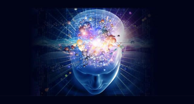 mindfulness-beyin-yapisi.jpg