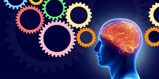 Full Neuro Linguistic Programming (NLP) Diploma Course