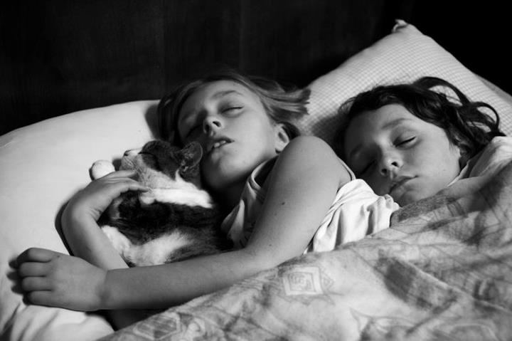 The Cat Ladies  Alain Laboile 1