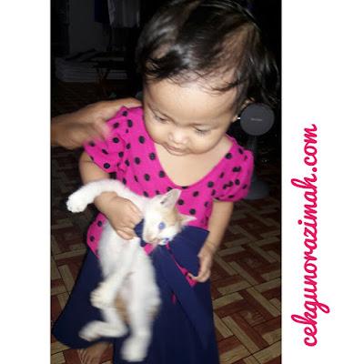 dhia zahra, suka kucing, anak kucing comel, dhia zahra setahun