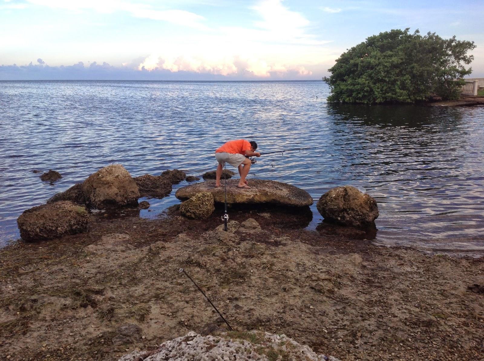Maria Medina Your Palmetto Bay Cutler Bay Realtor