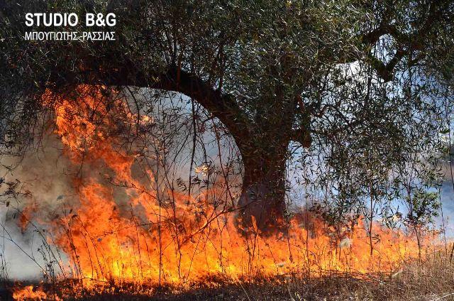 Μεγάλη πυρκαγιά στις Σπέτσες