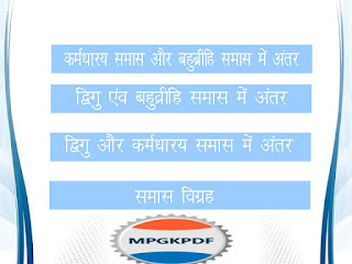 Bahubrihi karmdharya Digu Samas me antar