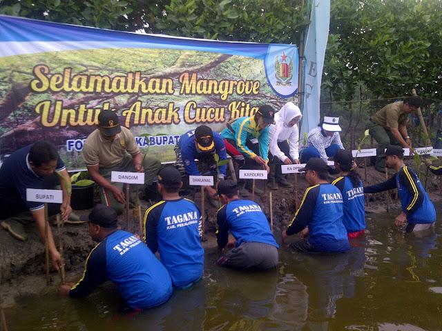 Peduli Lingkungan, Lanal Tegal tanam 1500 Bibit Mangrove di Pekalongan