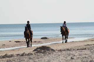 Two horses being ridden on the beach sand with the ocean in the background