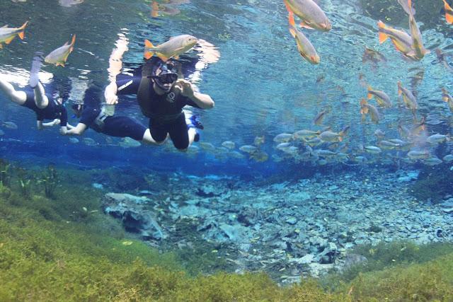 Flutuação Aquário Natural