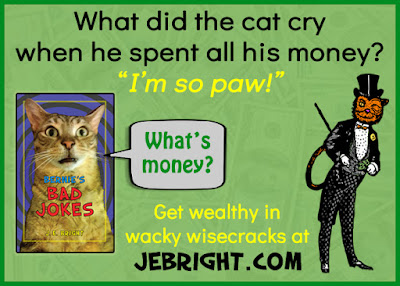 "What did the cat cry when he spent all his money? ""I'm so paw!"" Get wealthy in wacky wisecracks at jebright.com. Bernie says: ""What's money?"""