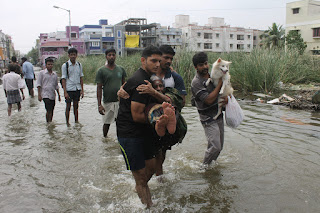 A woman and a dog are rescued from flood waters in Chennai, India, 04 December 2015. (Credit: © BABU/epa/Corbis) Click to Enlarge.