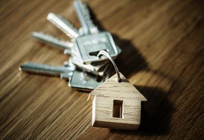 Rahasia cepat kaya dari bisnis peternakan properti modal dengkul Rahasia Cepat Kaya Dari Bisnis Peternakan Properti Modal Dengkul
