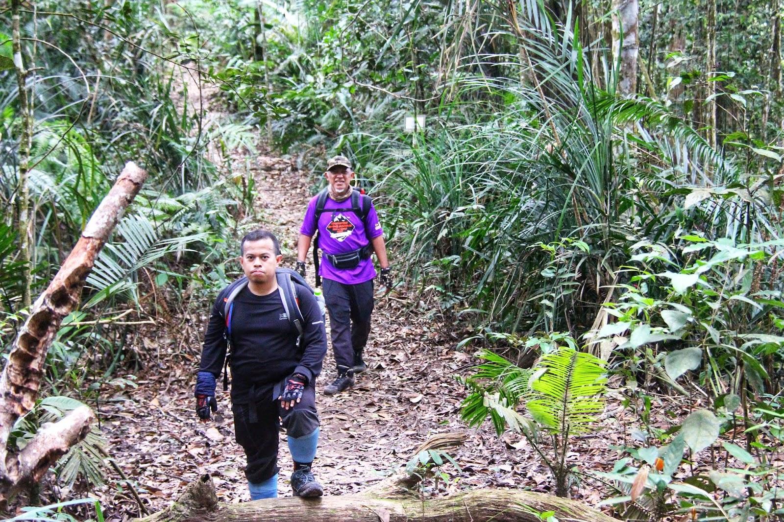 Menuju ke puncak Gunung Berembun 4