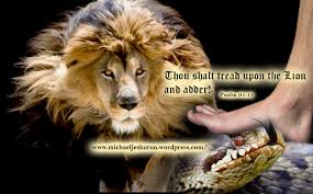 Psalm 91:13 - You shall tread upon the lion and adder: the young lion and the serpent shall you trample under feet.