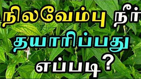 Nilavembu Kashayam prevents dengue
