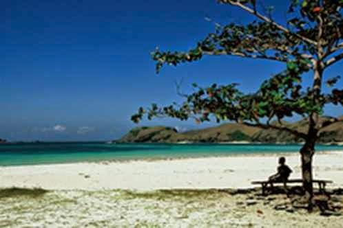Pantai Lovina - tempat wisata alam di bali yang bernuansa pantai