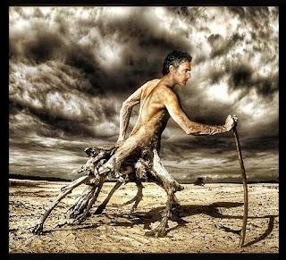 De la resiliencia, o el que no se consuela es porque no quiere, Francisco Acuyo