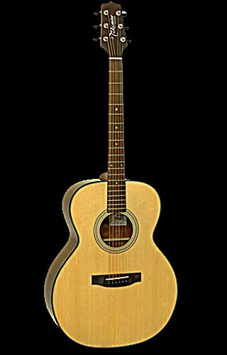 dan guitar takamine d50-ns