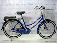 A 24 Inch City Bike Phoenix 24-88 Front Disc Brake