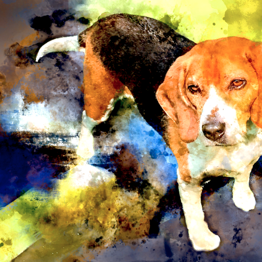 Learn How You Can Win A Watercolor Pet Portrait