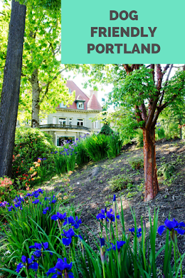 Travel the World: Portland has many outdoor attractions that are also dog friendly