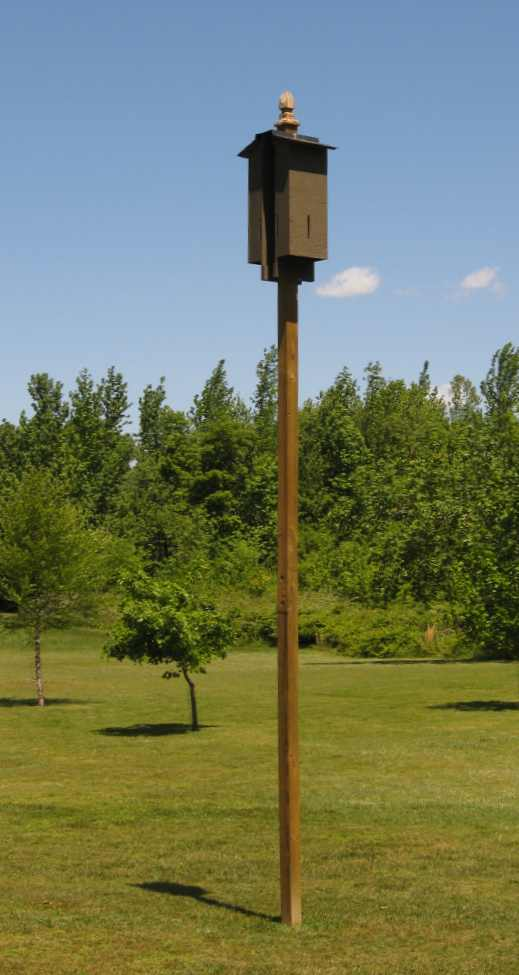 My Father S World Bat Houses