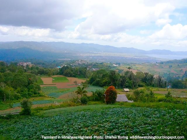 Minahasa North Sulawesi tour