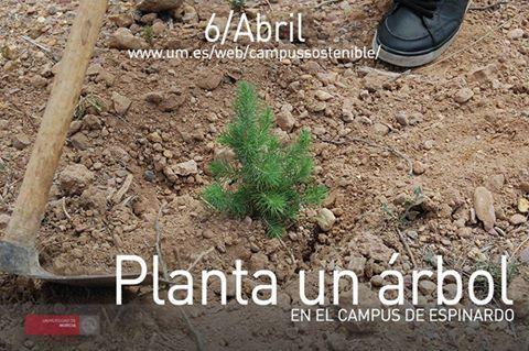 Plantación de árboles en el Campus de Espinardo.