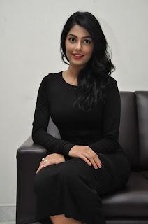 Actress Anisha Ambrose Stills in Black Dress at Run Movie Press Meet  0092.jpg