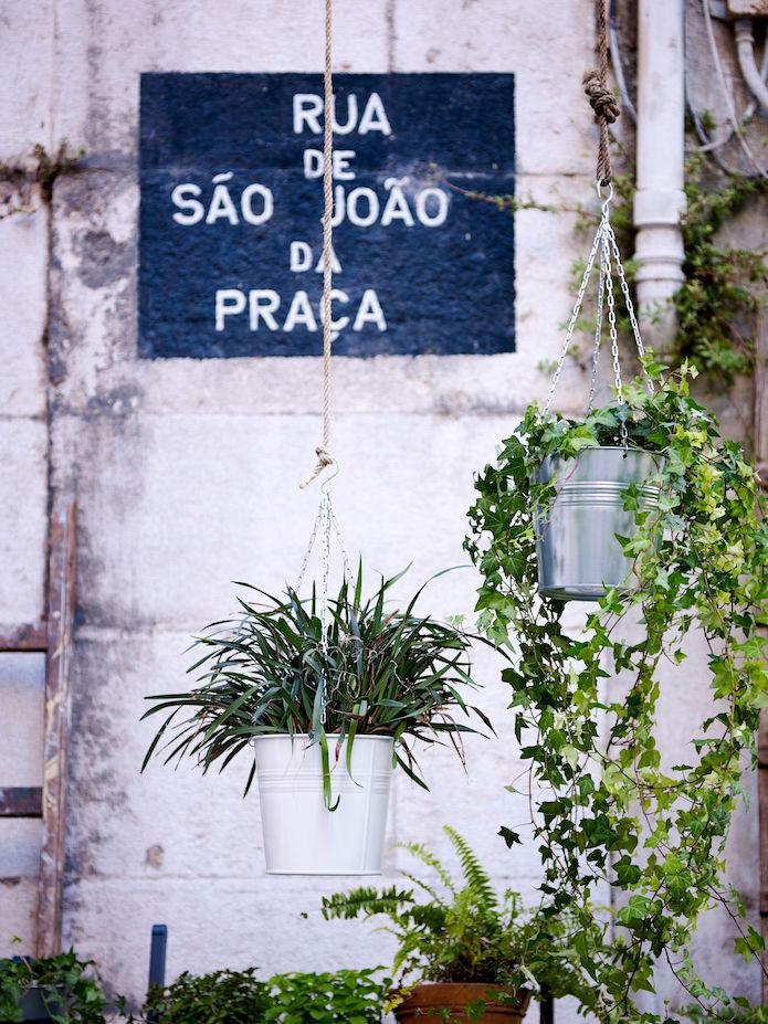 Plantas colgantes-ikea-verano
