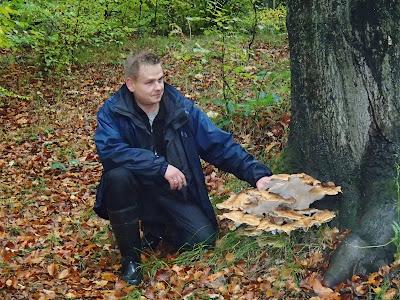 grzyby 2018, grzyby w październiku, grzyby na Śląsku, grzyby jesienne, grzyby zimowe, boczniaki, czubajki, borowiki, grzyby nadrzewne