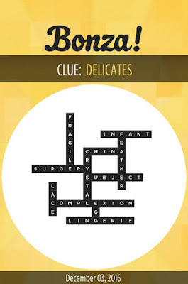 December 3 2016 Bonza Daily Word Puzzle Answers