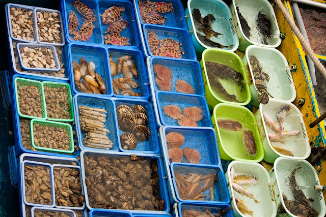 Backpacking travel adventure and hong kong travel seafoods