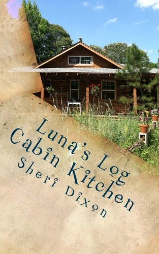 Luna's Log Cabin Kitchen