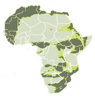 Biko Africa symbol.