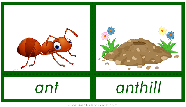 Animal homes and habitats -- ant - anthill -- printable flashcards for English learners