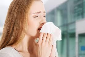 cara merawat allergik