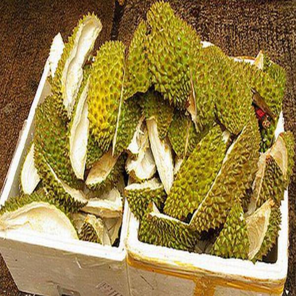 Kulit Durian, Manfaat Kulit Durian, Khasiat Kulit Durian