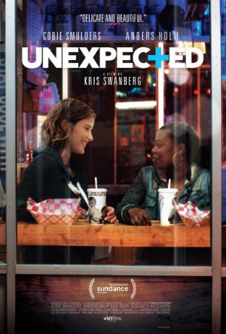 Unexpected [2015] [DVDR] [NTSC] [Subtitulado]