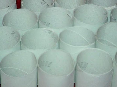 rolos de papel higiênico vazios