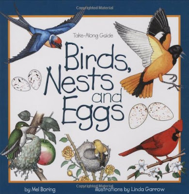 Birds, Nests, and Eggs