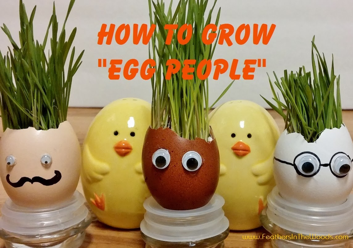 make egg shell people planters